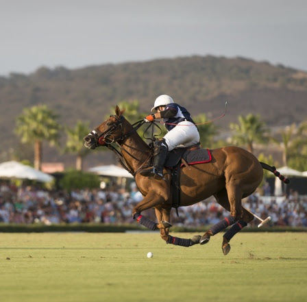 Lucchese USPA Intra-Circuit - The Lucchese USPA Intra-Circuit kicks off on Sunday, June 16 at 2pm at the Santa Barbara Polo & Racquet Club.Check in for Sunday Polo begins at 2pm, followed by the Pony Parade, the singing of the National Anthem, team introductions and the ball throw in to start the match at 3pm. More information and tickets can be found here.