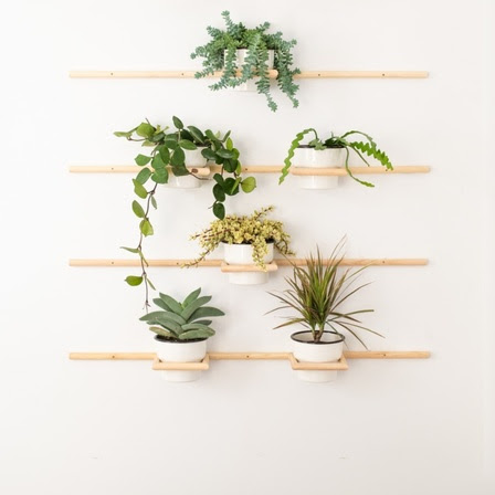 6 DIY Plant Displays to Take Your Green Scene to the Next Level - For many of us, the arrival of fall is a perfect time to reassess our indoor plantings. Score some creative ideas for how to introduce more green into your home with Domino, right here.