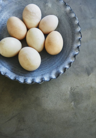 De_La_Espada_Look_Book_Volume_2_Eggs_photo_by_Yuki_Sugiura.jpg