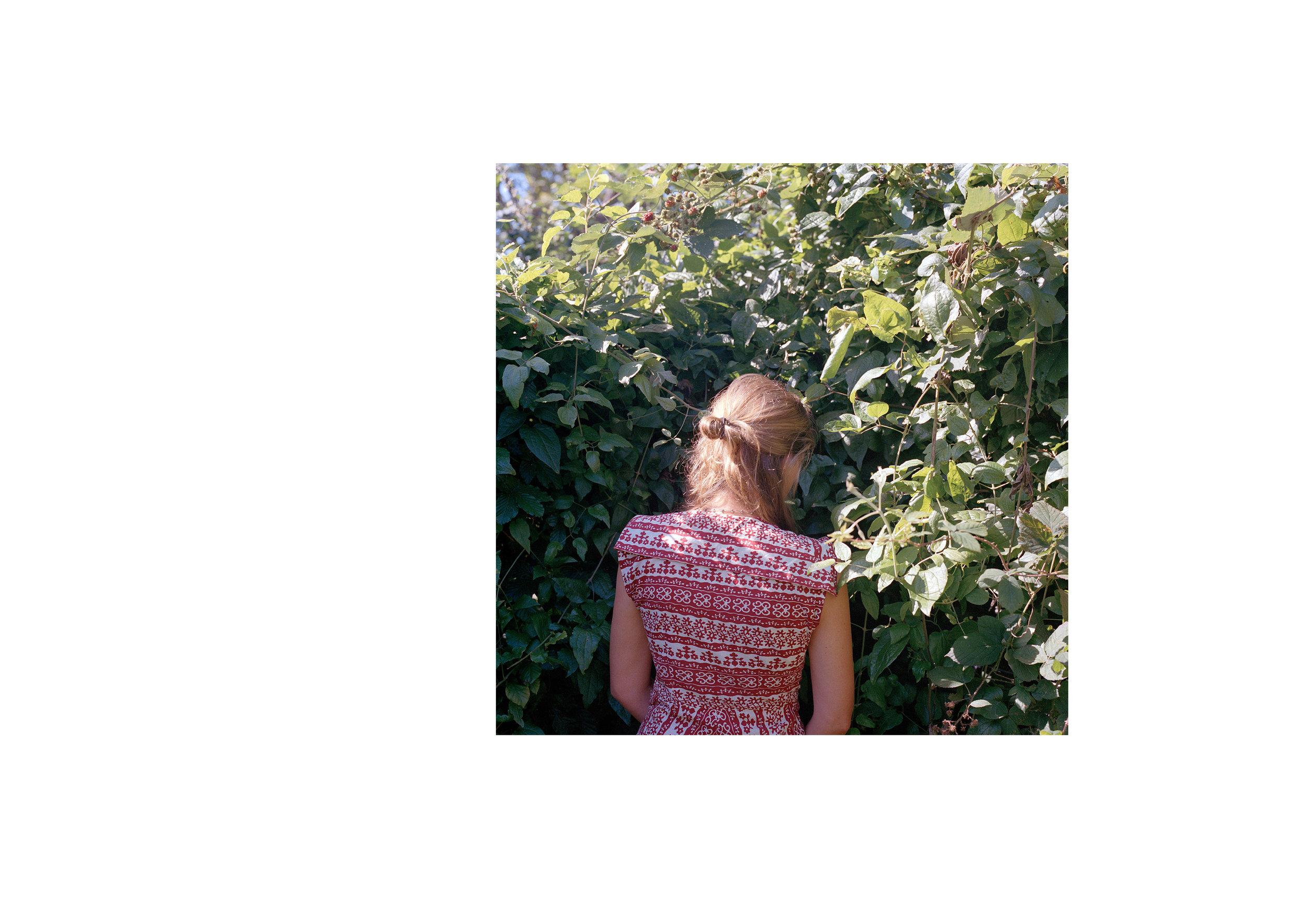 stillhere_book8_layout4.jpg