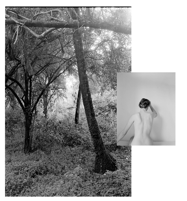 collage test2.jpg