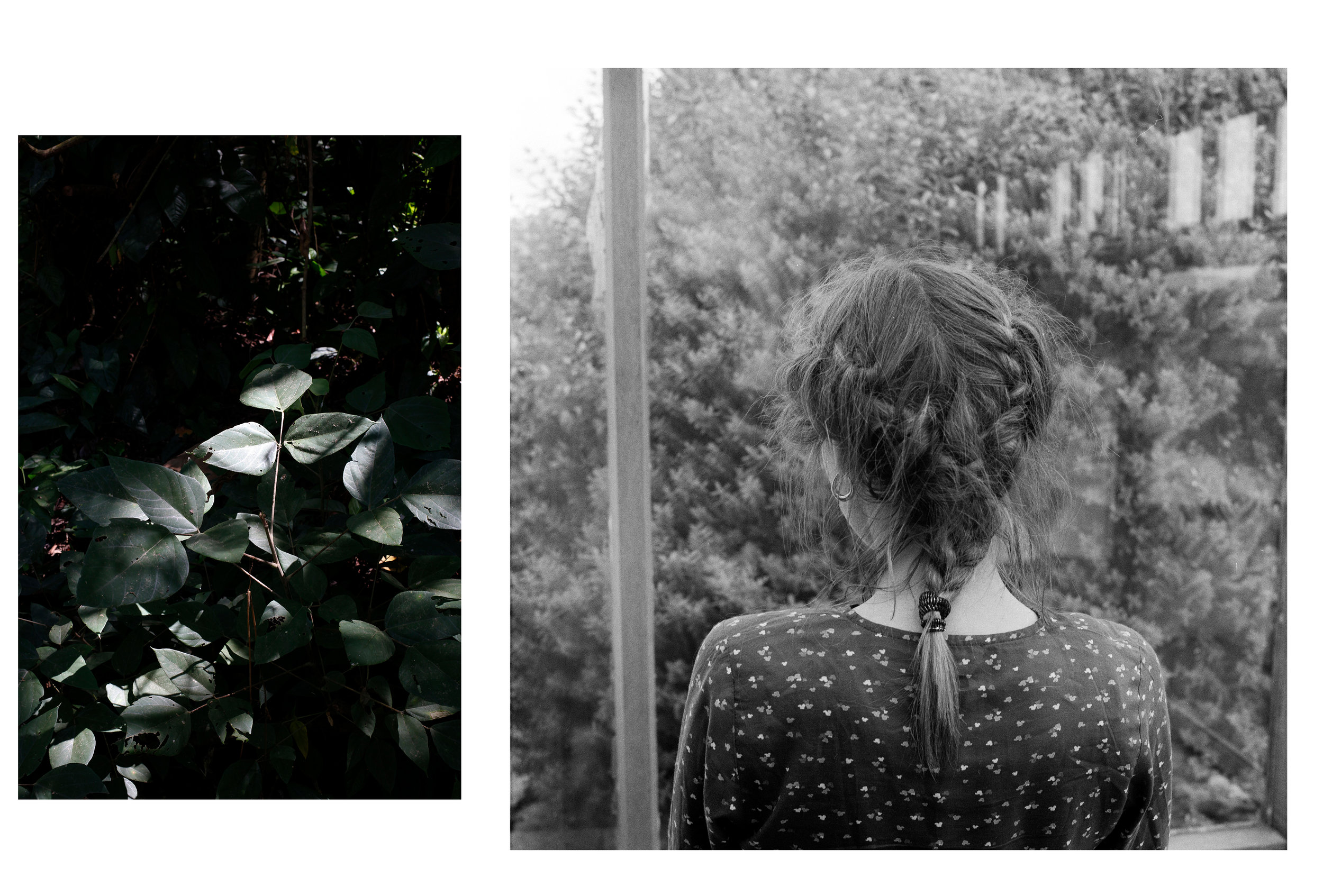 fragments2_03.jpg