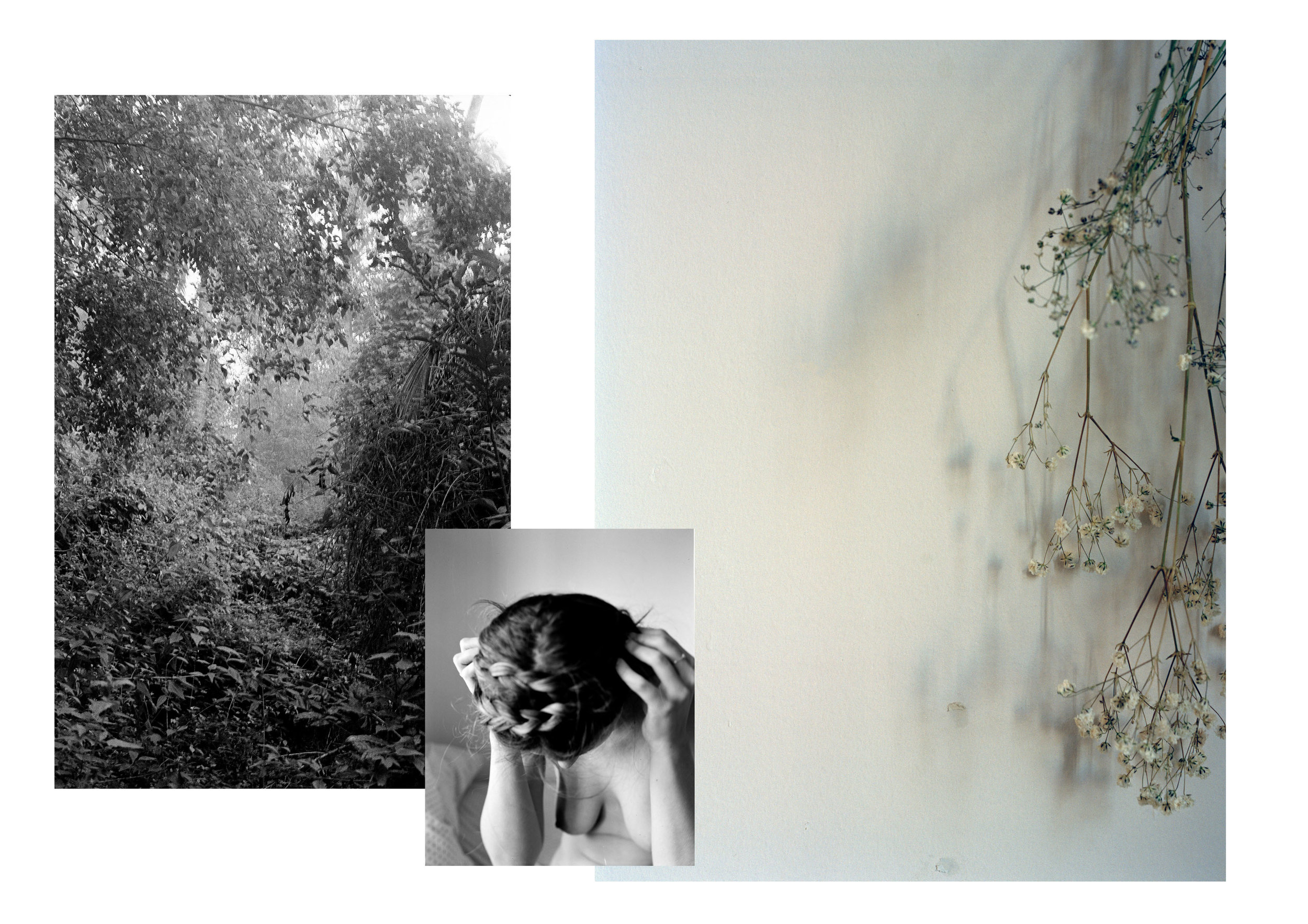 collage test.jpg