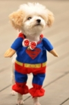 XSMALL-Superman-Dog-Cat-Puppy-Halloween-Costume-Clothes-Pet-Apparel-Superdog-Dress-Up-Pet-Supplies-by-Accessorybee-0-0.jpg