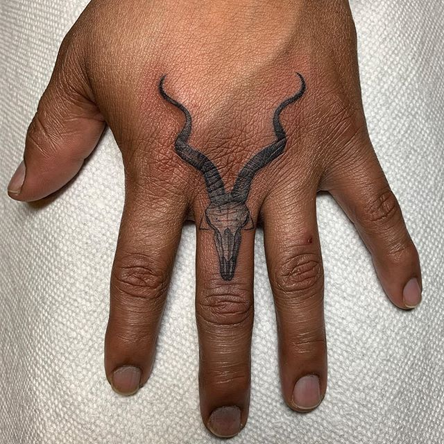 Kudu skull for @jsboelk done at #bodyelectrictattoo . . . . #tattoo #tattooing #la #latattoo #latattooartist #losangeles #losangelestattoo #melrose #fineline #finelinetattoo #fingertattoo #kudu #smalltattoos #smalltattoo #tattoowork #tattooworker