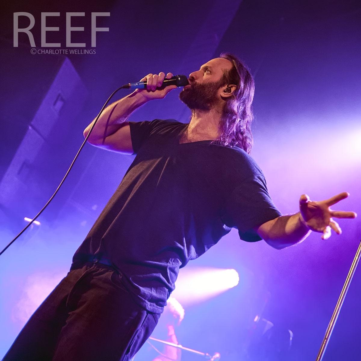 Reef-01wm.jpg