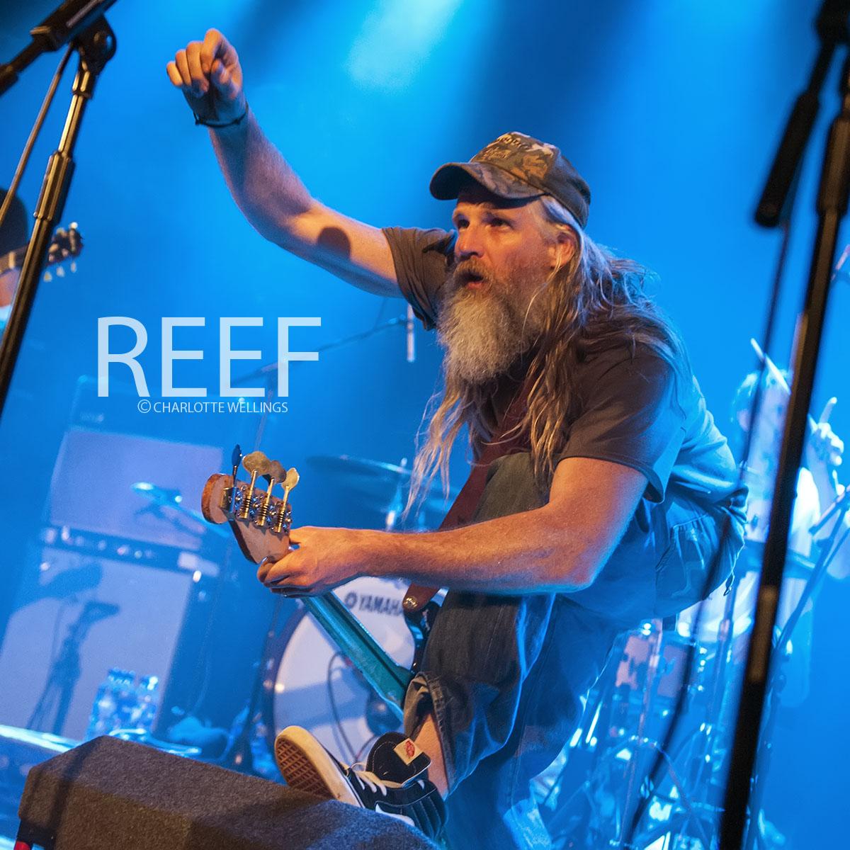 Reef-02wm.jpg