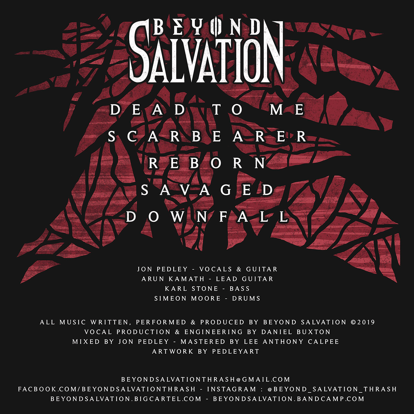 Beyond Salvation Scarbearer Back Cover.jpg