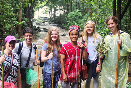 hike the jungles of doi inthanon with a hill tribe medicine man.jpg