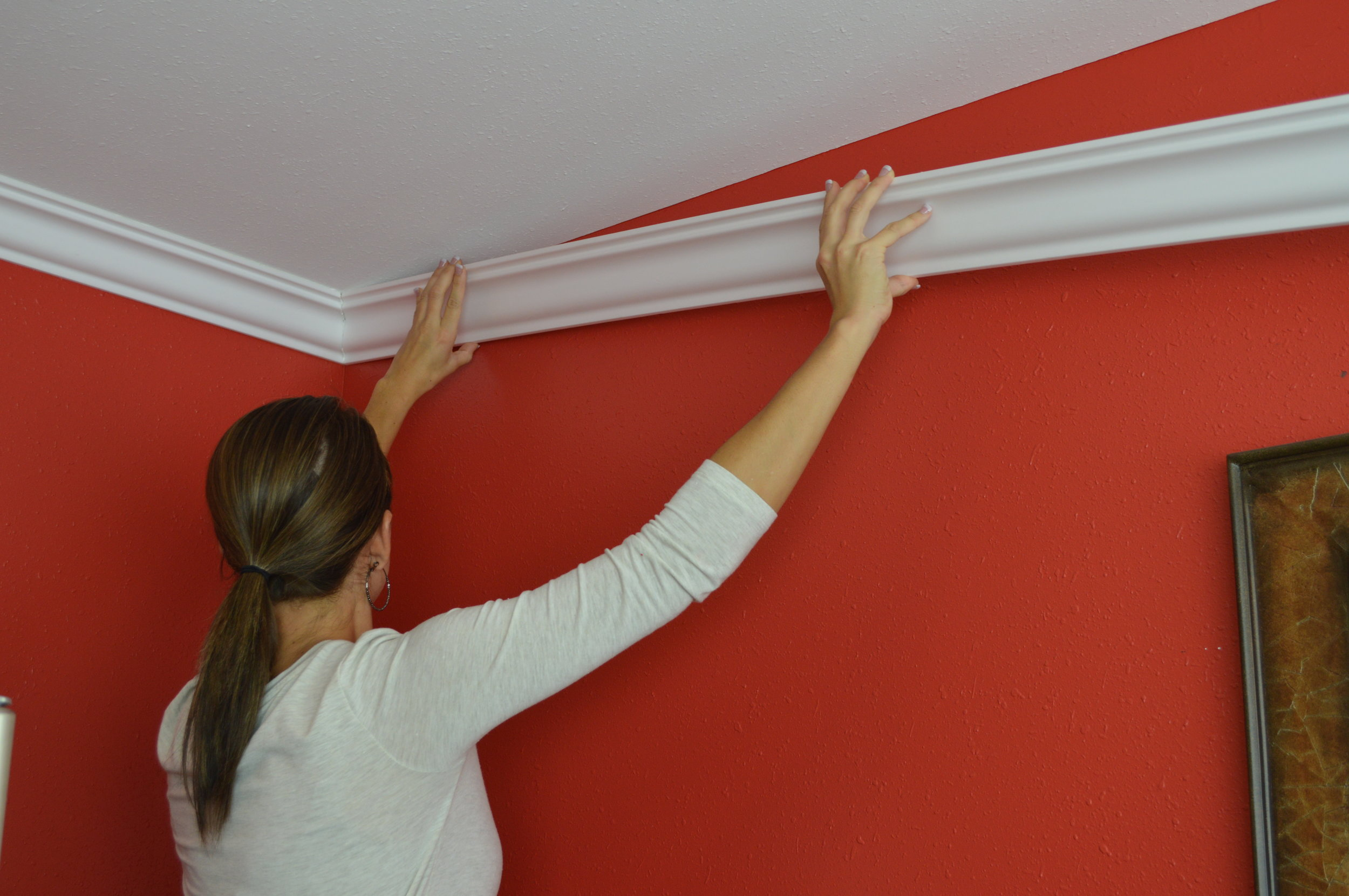 Nomastyl Crown Molding