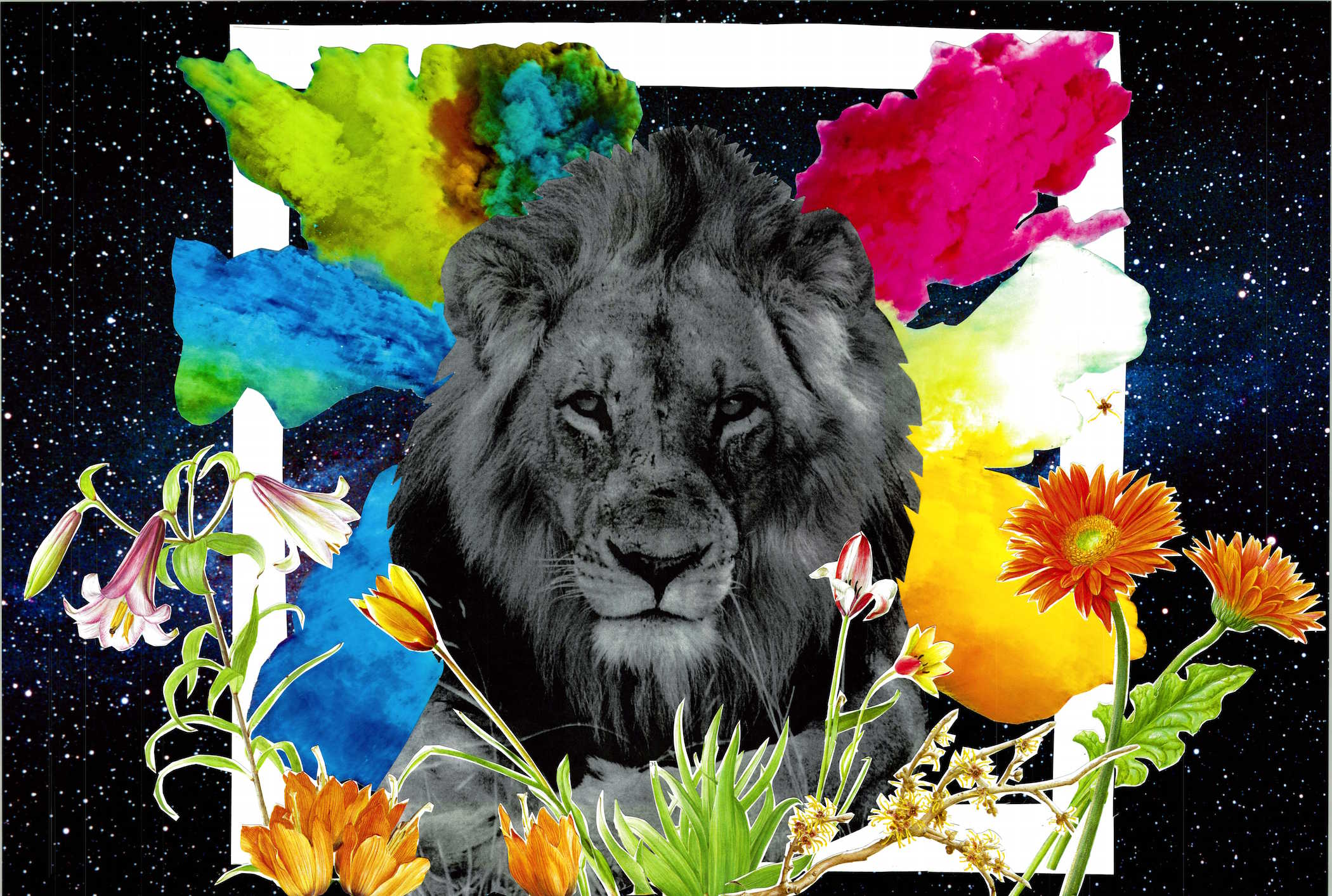 We are the Lions by Maghan McDowell.jpg