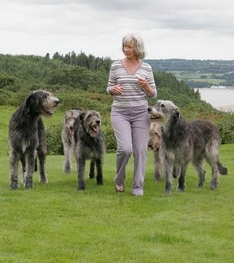 Elaine & hounds.jpg