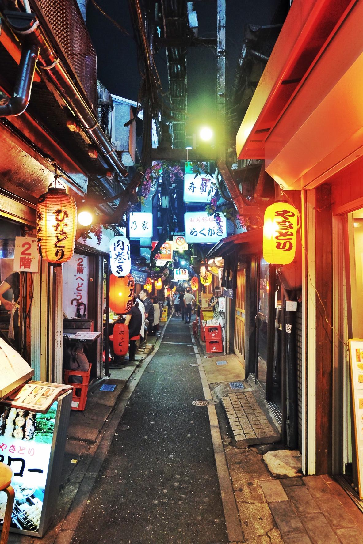 Piss Alley in Shinjinku