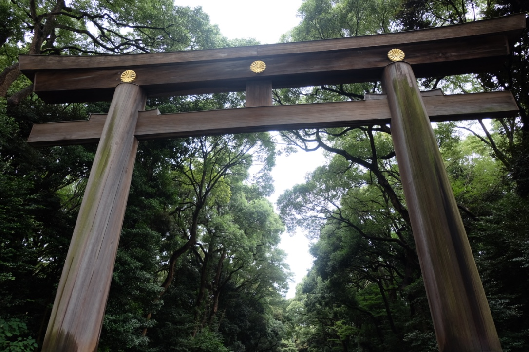 The walk to the stunning Meji Shrine