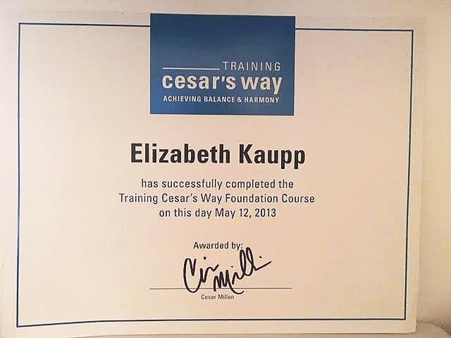 Kaup+certificate.jpg
