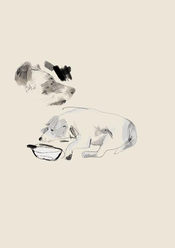 Pencil_studies_procreate_illustrations