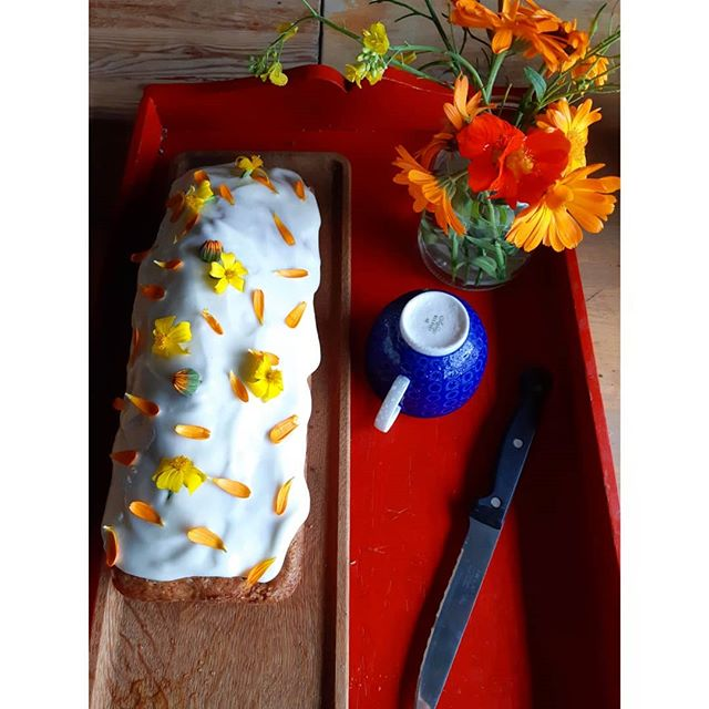 Thanks for coming to Sunday farm store! Every week we make squash cake. Every week Marion (age 2) is waiting eagerly to taste the end piece 😊 #linnestadgård #organicfarming #gårdsbutikk #økogård #økologisk #rettfrabonden #norgetrengerbonden #zucchinibread #farmkids #økomat