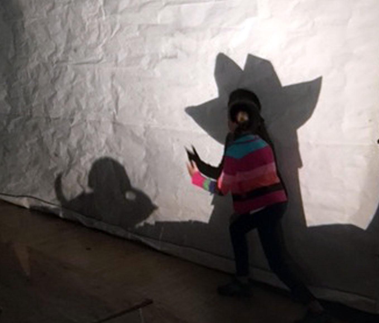 ShadowLight_Photo1 copy.jpg