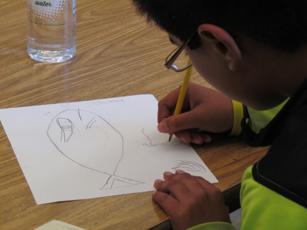 Designing shadow puppet