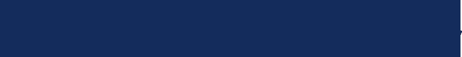 Navy Text Logo