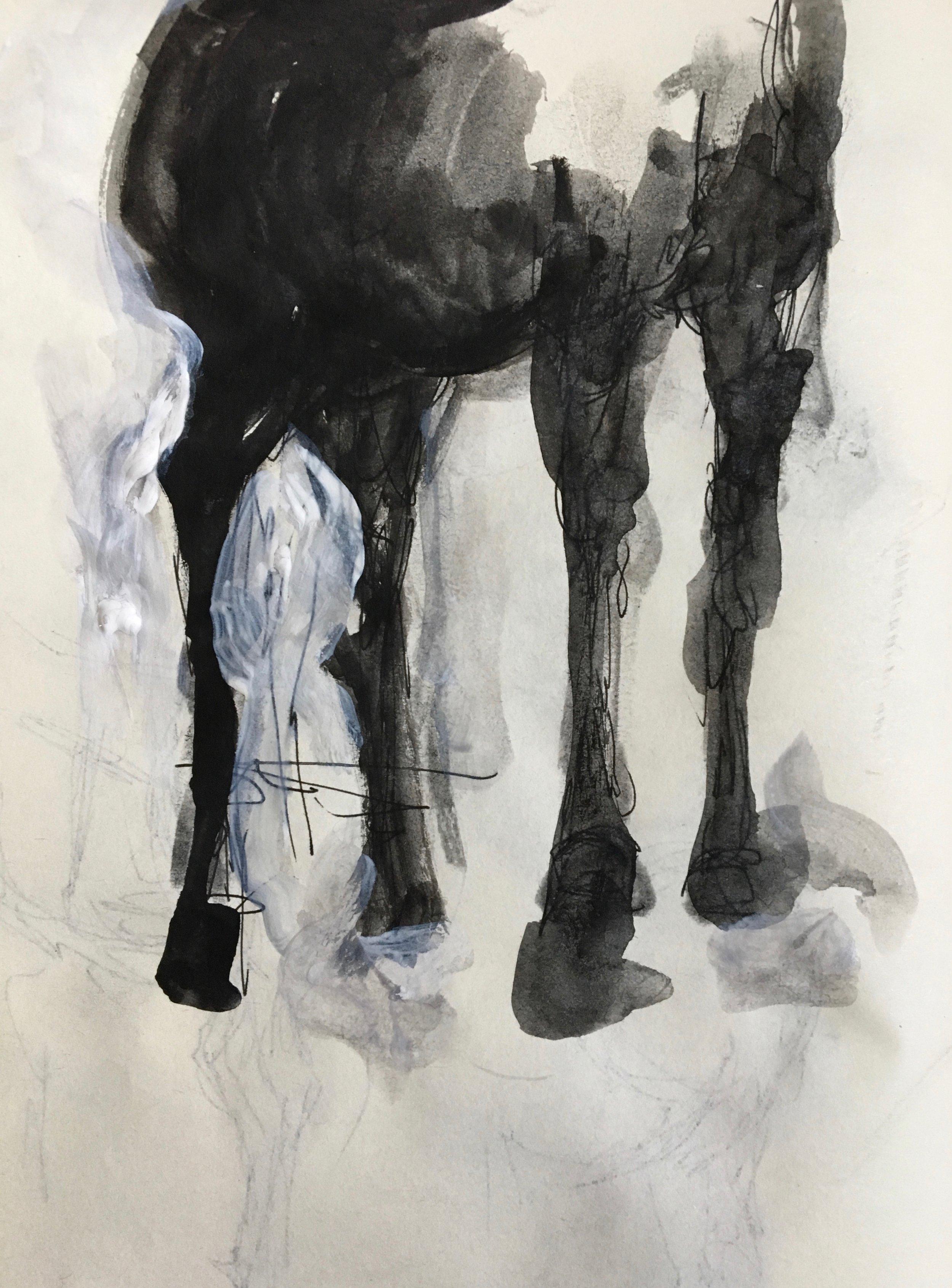 Horse Legs.
