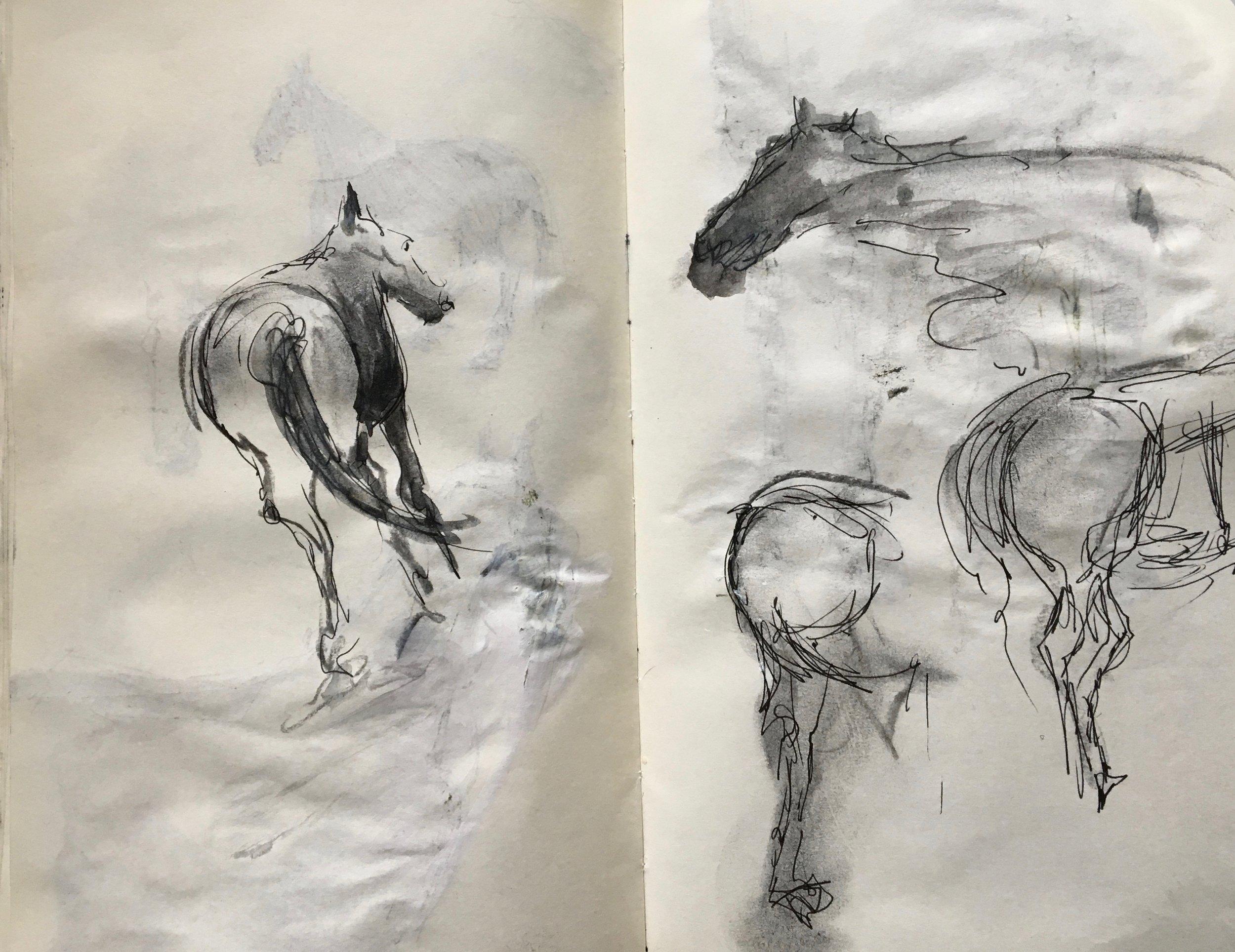 Sketching more...