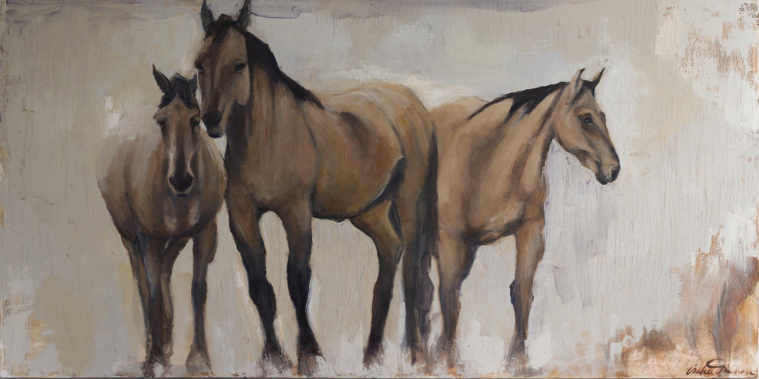 THREE HORSES STARING