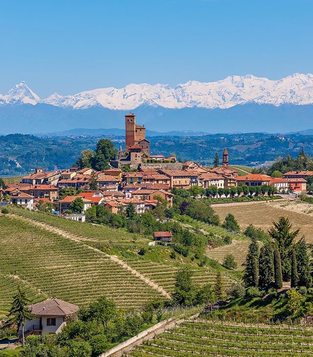 Wine Region Wednesday 🔦: Barbaresco! East of Alba, in the foothills of the Alps lies the Barbaresco DOCG. Originally made a DOC in 1966 the appellation was upgraded in 1980. These regal wines are made from 100% Nebbiolo and aged for a minimum of 26 months with 9 of those in oak. A minimum ABV of 12.5% must be achieved as well. What's your favorite? And speaking of Italy- don't forget to apply for our Italian Enrichment Trip. There's a link in the bio. Ciao!