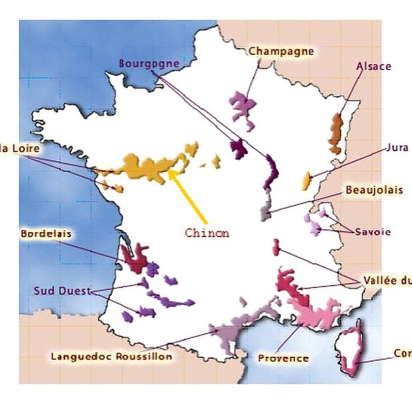 Wine Region Wednesday 🔦: Chinon! Located in the Touraine department within the Loire Valley, France. Chinon is famous for the lovely Cabernet Franc grape. Marked by tart red fruit and green peppers with great acid and tannin. The confluence of Loire and Vienne River give way to gentle slopes and southeast exposure.