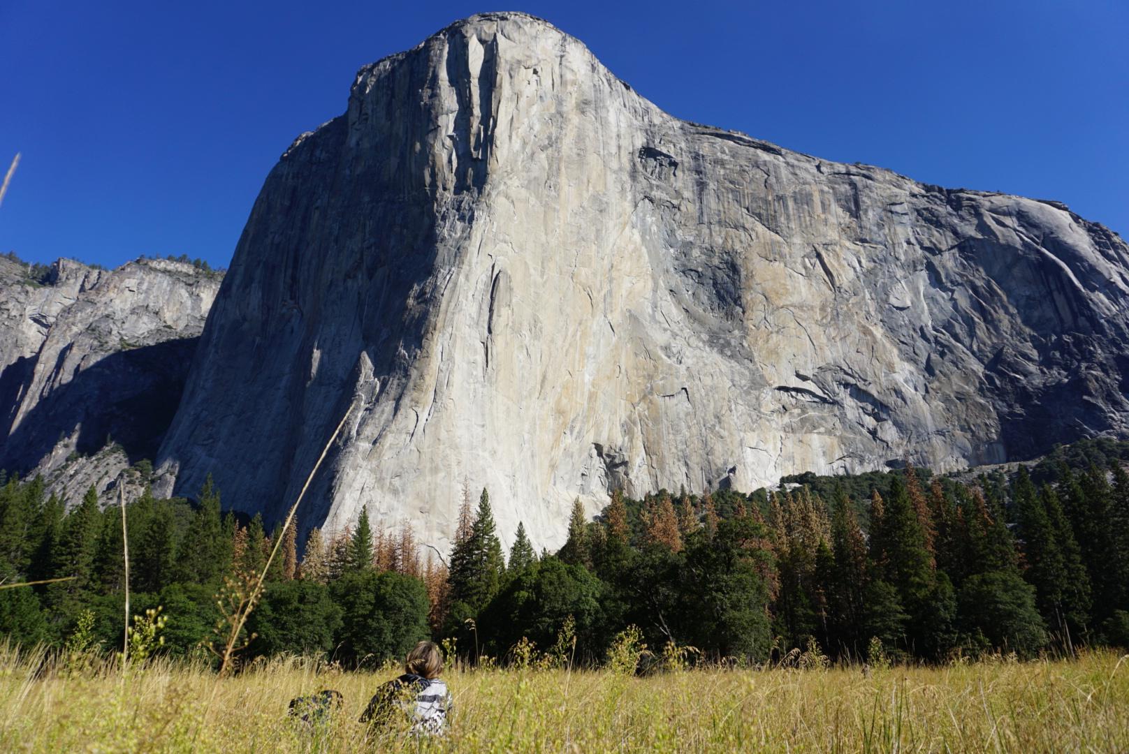 Above : Yosemite National Park
