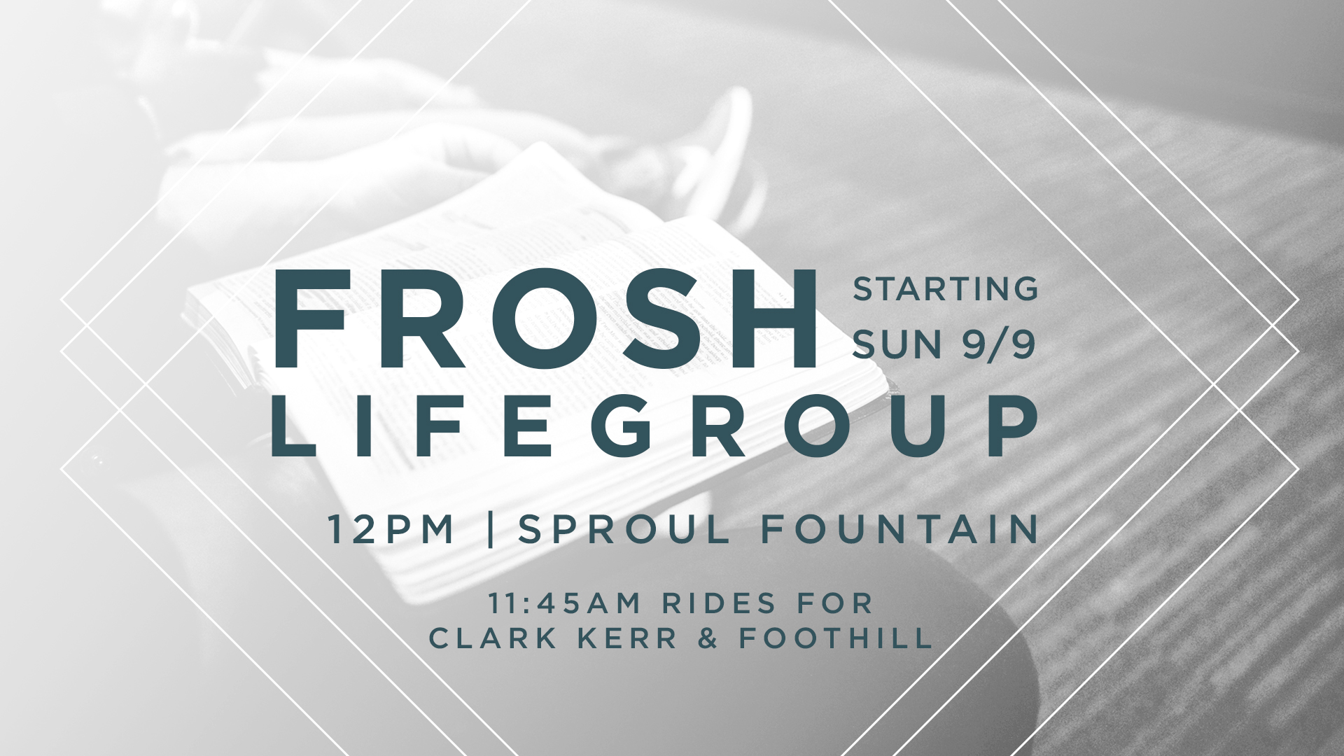FroshLifegroup_20180909_splash.jpg