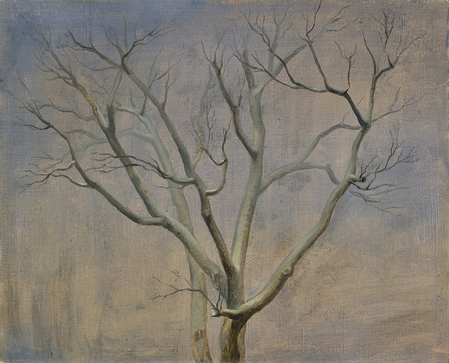 The Tree , 1948  oil on canvas 16 x 20 inches; 40.6 x 50.8 centimeters