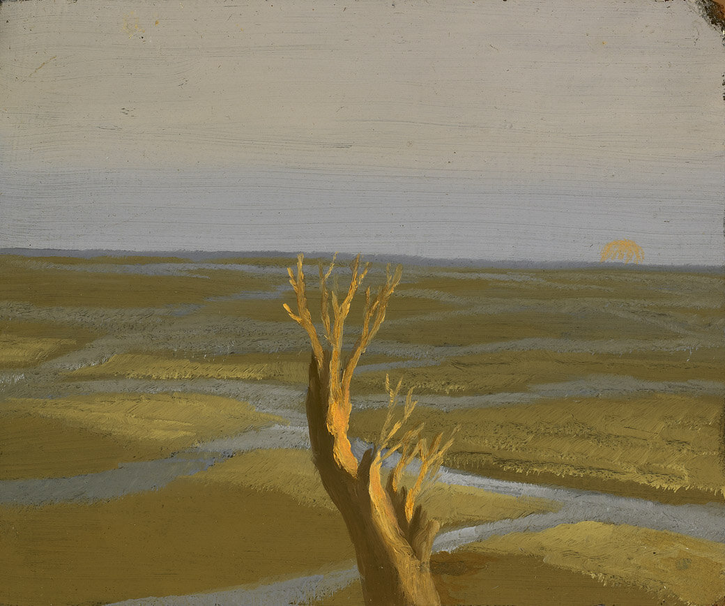 The Marshes , 1950