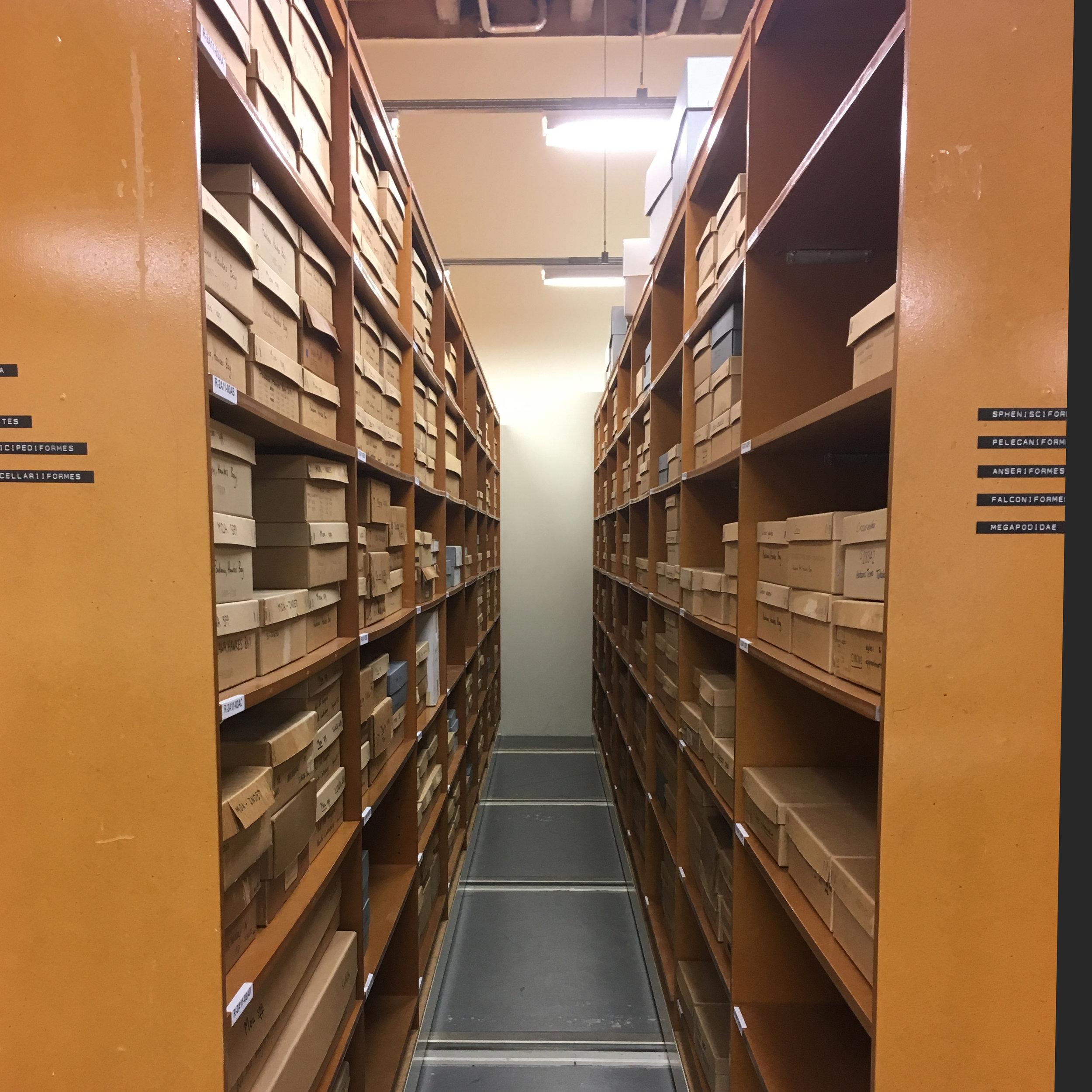 Science Stores.jpg