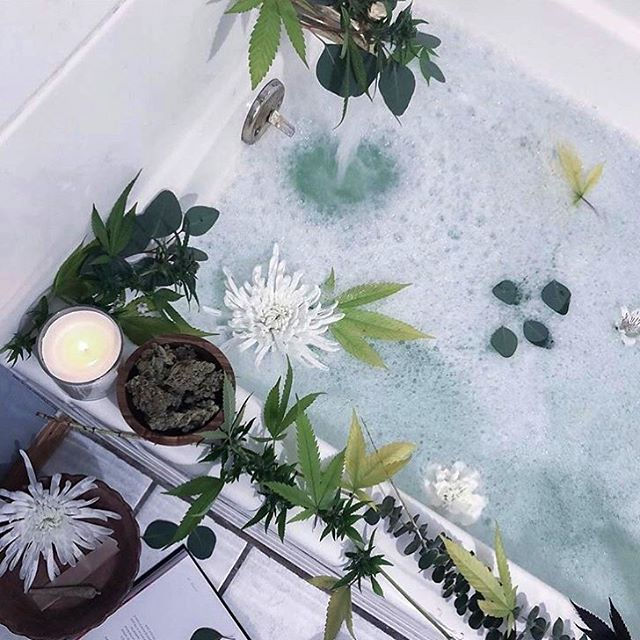 For your self care Sunday inspo, try a green tea bath! The benefits include🌿🍃 •boosts your immune system •decreases risk of different cancers •lowers blood pressure •kills bacteria and inhibits viruses •detoxifies cells throughout the body