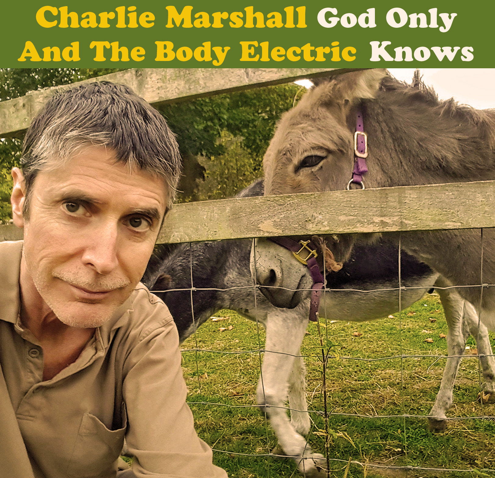 God Only Knows cover.jpg