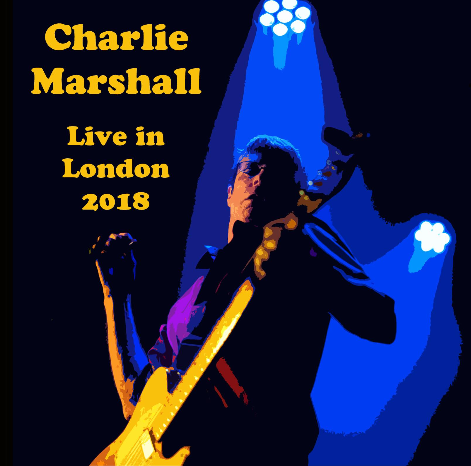 Charlie Marshall live.jpg