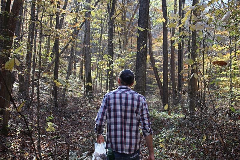 walking thru woods with mushroom bag