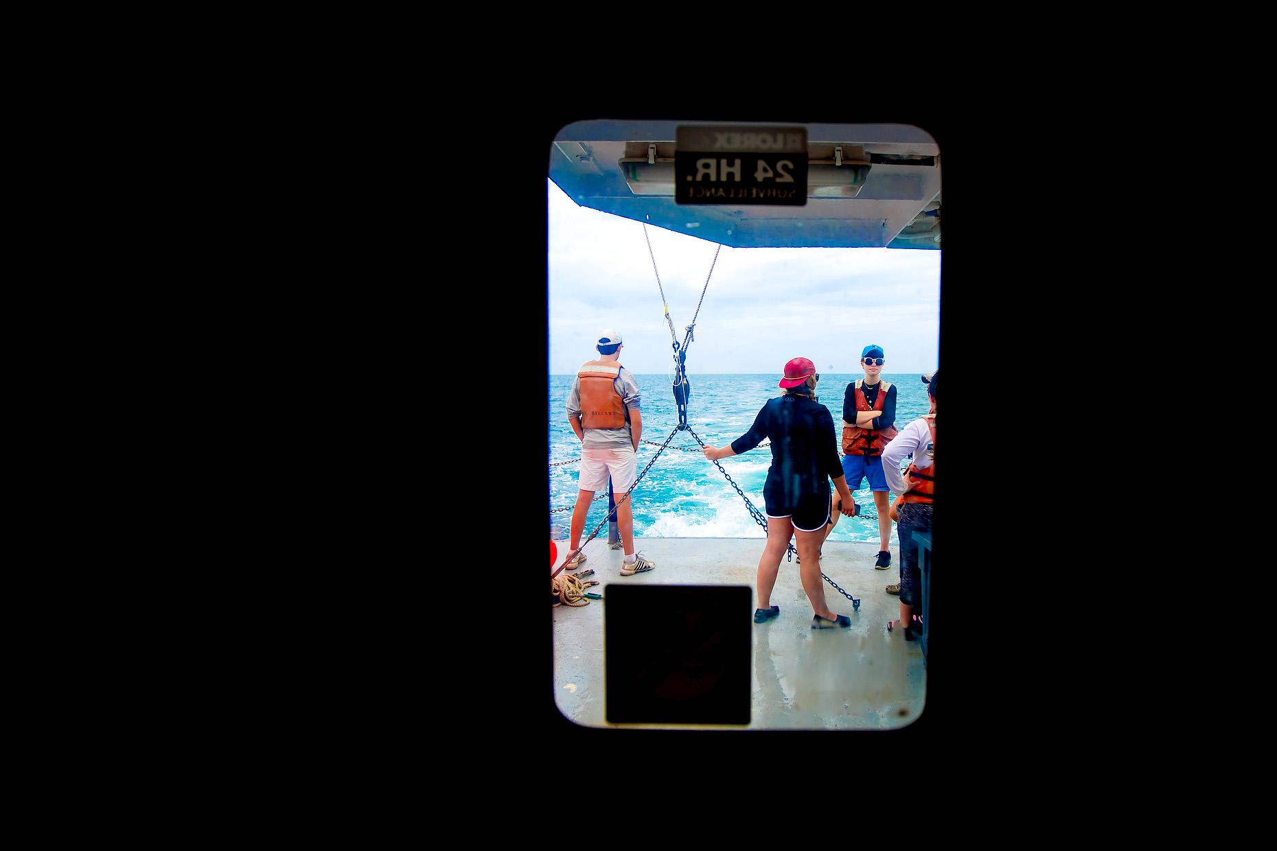 NEW COLLEGE OF FLORIDA SHARK MARINE BIOLOGY 0003.JPG