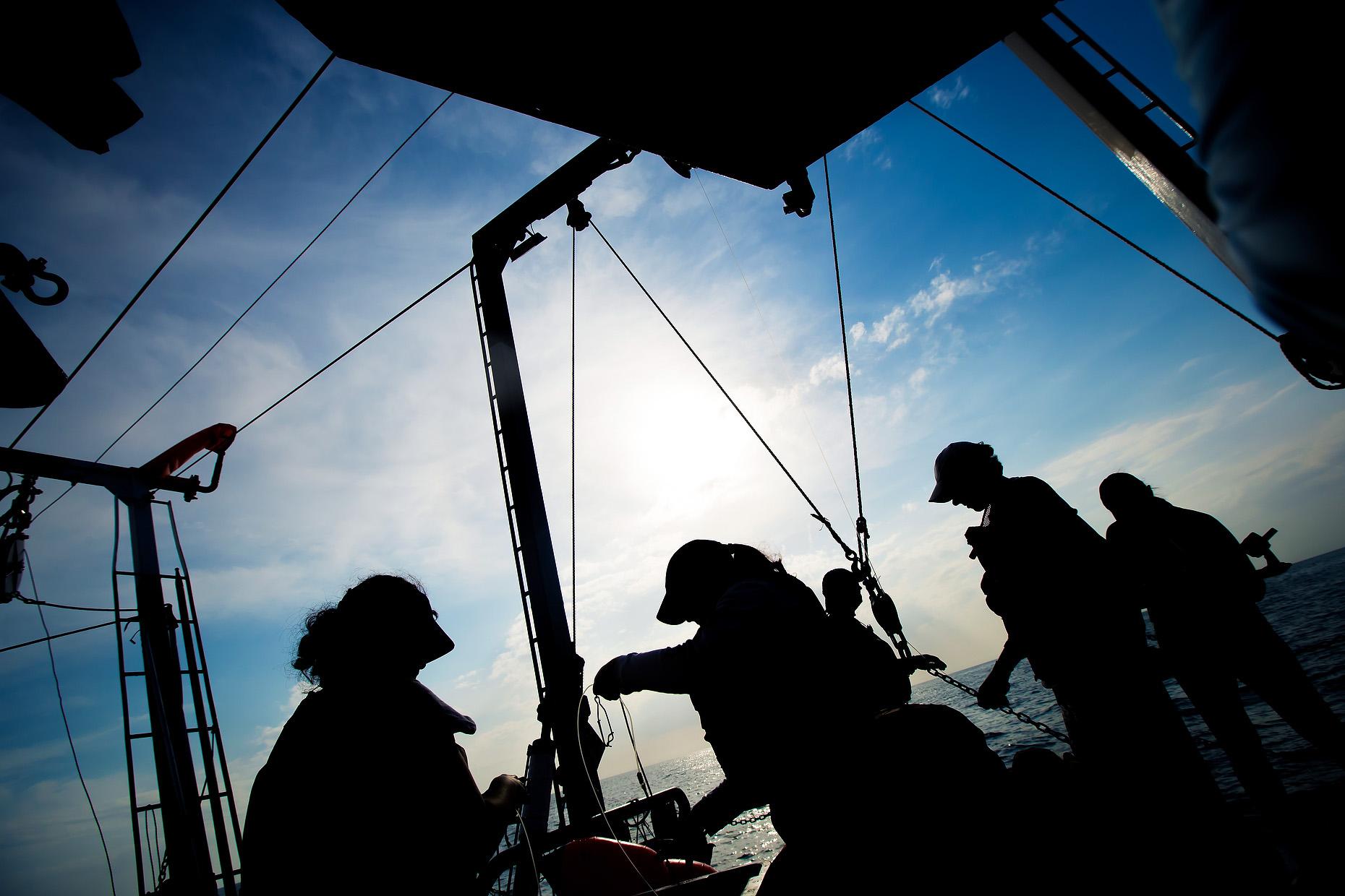NEW COLLEGE OF FLORIDA SHARK MARINE BIOLOGY 0010.JPG