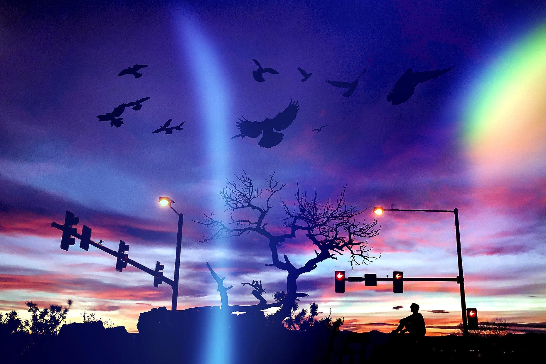 stoplight.jpg