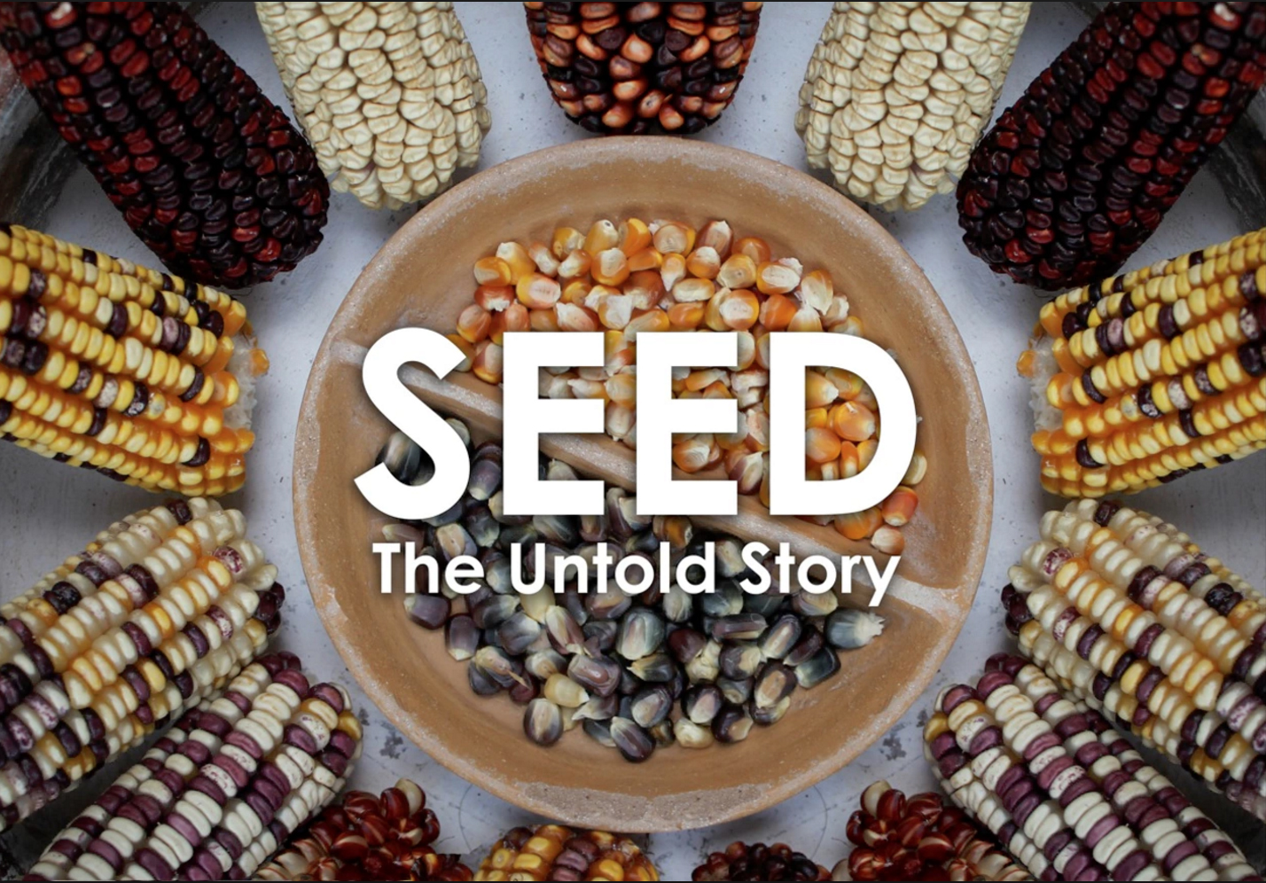 seed_title_2.jpg