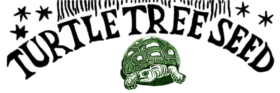 TurtleTreeSeedLogo900x3001.jpg