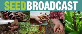seed-broadcast-logo-350x144.jpg