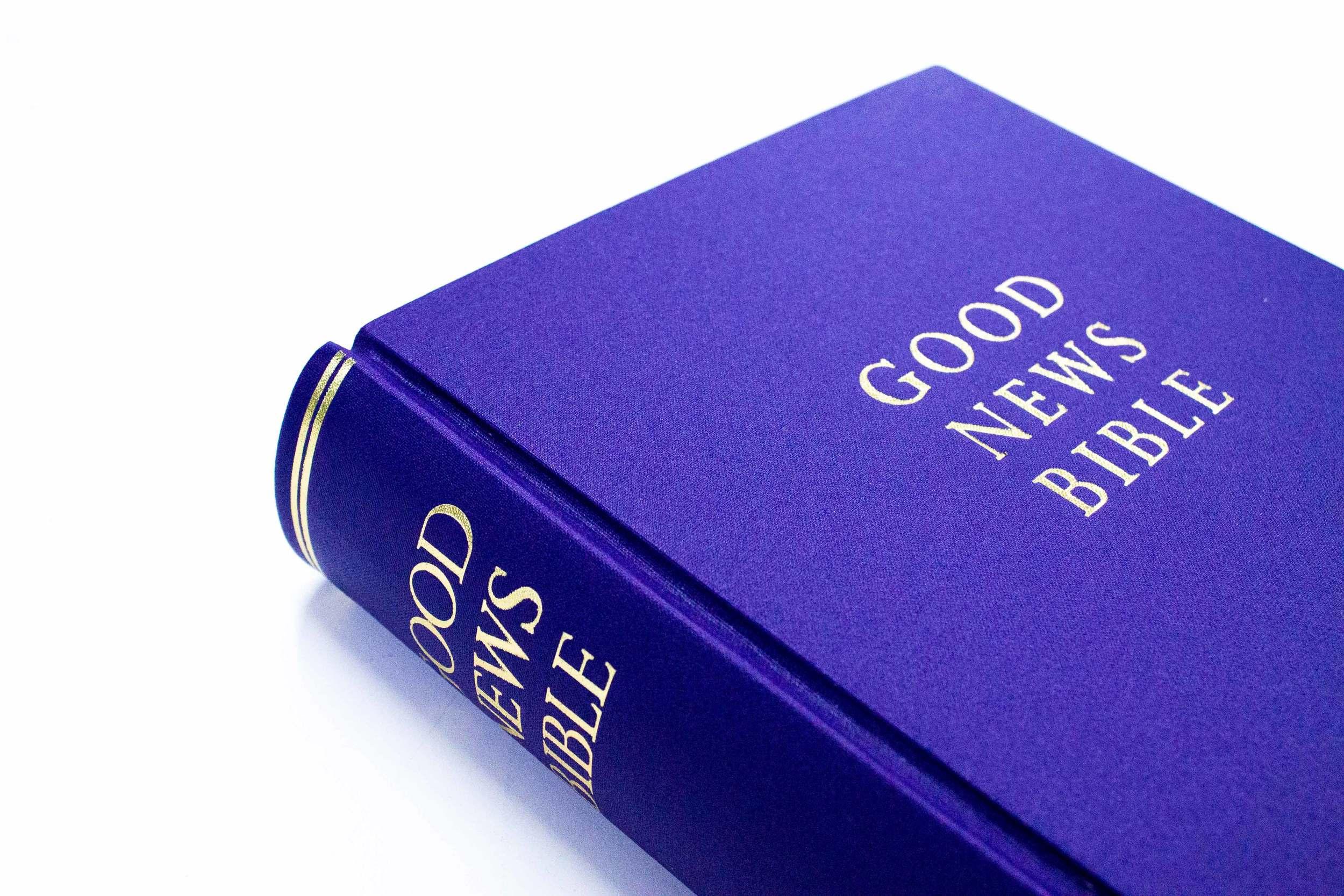 Rebound bible