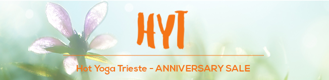 Anniversary Sale Header