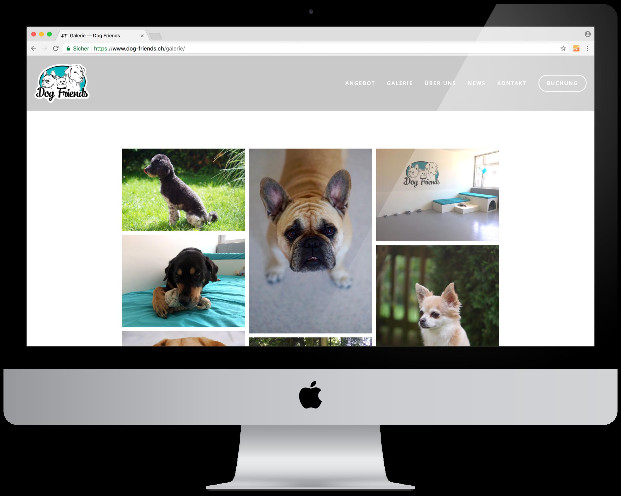 Internet_DogFriends5.png