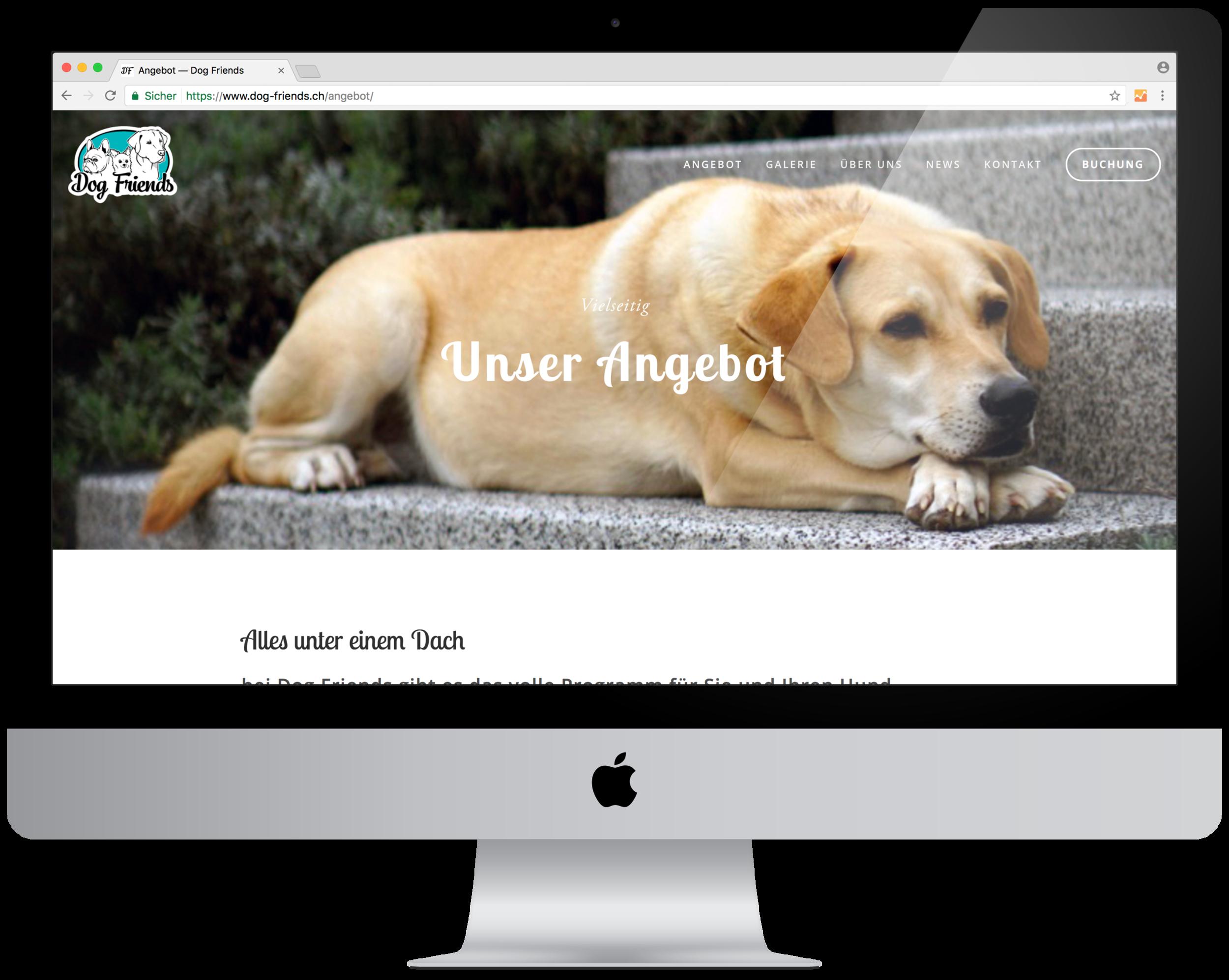 Internet_DogFriends3.png