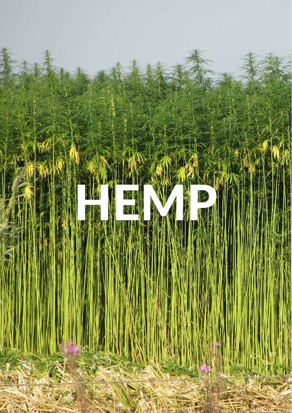 Hemp-Research-pages.jpg
