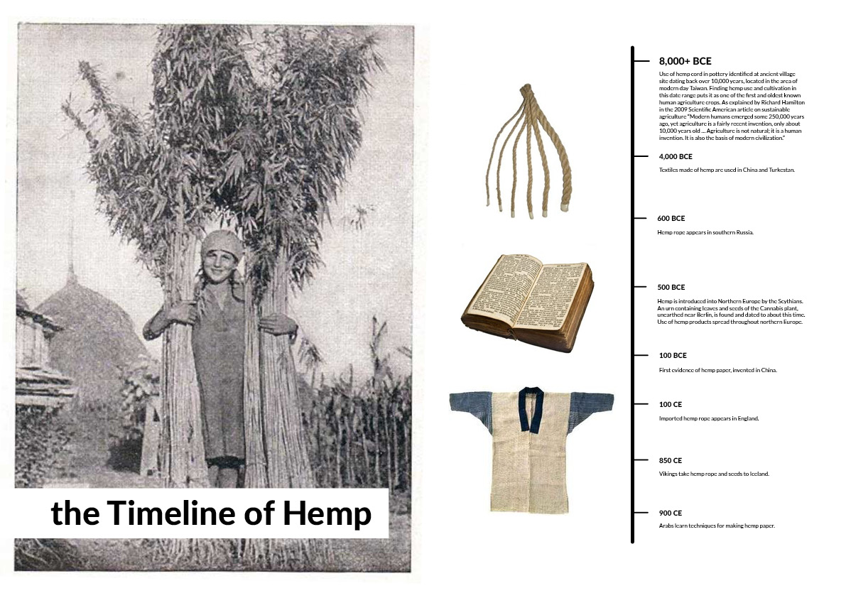 Hemp-Research-pages4.jpg